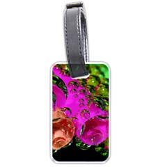 Tubules Luggage Tag (Two Sides)