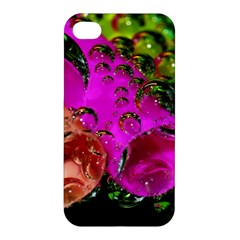 Tubules Apple Iphone 4/4s Hardshell Case