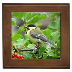Songbird Framed Ceramic Tile