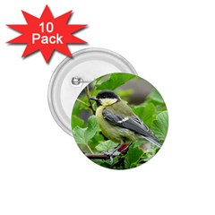 Songbird 1 75  Button (10 Pack)