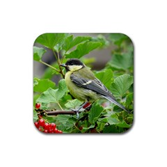 Songbird Drink Coaster (Square)