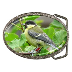 Songbird Belt Buckle (Oval)