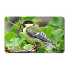 Songbird Magnet (rectangular)