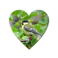Songbird Magnet (heart)
