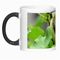 Songbird Morph Mug