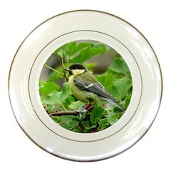 Songbird Porcelain Display Plate