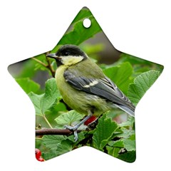 Songbird Star Ornament (Two Sides)