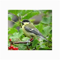 Songbird Canvas 24  x 36  (Unframed)