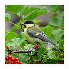 Songbird Glasses Cloth (Medium)