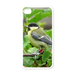 Songbird Apple iPhone 4 Case (White)
