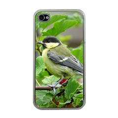 Songbird Apple iPhone 4 Case (Clear)