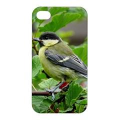 Songbird Apple iPhone 4/4S Hardshell Case