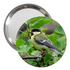 Songbird 3  Handbag Mirror