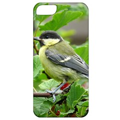 Songbird Apple Iphone 5 Classic Hardshell Case