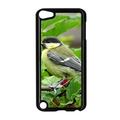 Songbird Apple iPod Touch 5 Case (Black)
