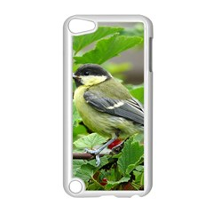 Songbird Apple Ipod Touch 5 Case (white)