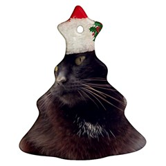 CHRISTMAS KITTY Christmas Tree Ornament (Two Sides)