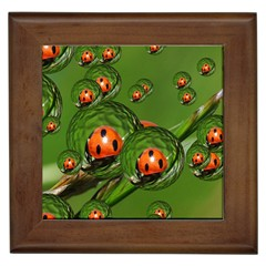 Ladybird Framed Ceramic Tile