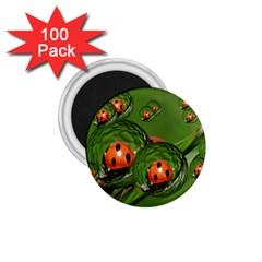 Ladybird 1 75  Button Magnet (100 Pack)