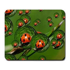 Ladybird Large Mouse Pad (Rectangle)
