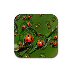 Ladybird Drink Coasters 4 Pack (Square)