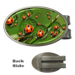 Ladybird Money Clip (Oval)