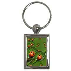 Ladybird Key Chain (rectangle)