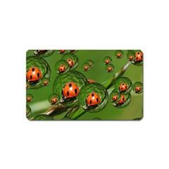 Ladybird Magnet (Name Card)