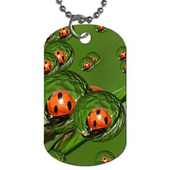 Ladybird Dog Tag (two Sided)