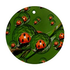 Ladybird Round Ornament (Two Sides)