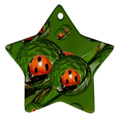 Ladybird Star Ornament (Two Sides)