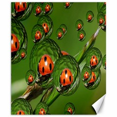 Ladybird Canvas 8  x 10  (Unframed)