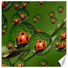 Ladybird Canvas 20  x 20  (Unframed)