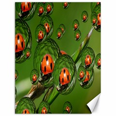 Ladybird Canvas 18  X 24  (unframed)