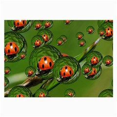 Ladybird Glasses Cloth (Large)