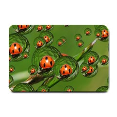 Ladybird Small Door Mat
