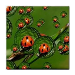 Ladybird Face Towel