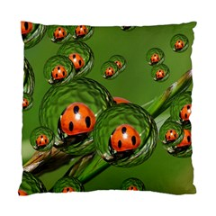Ladybird Cushion Case (Single Sided)