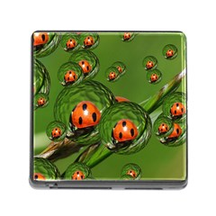 Ladybird Memory Card Reader with Storage (Square)