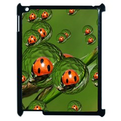Ladybird Apple iPad 2 Case (Black)