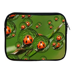Ladybird Apple Ipad 2/3/4 Zipper Case