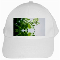 Leafs With Waterreflection White Baseball Cap