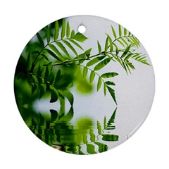 Leafs With Waterreflection Round Ornament