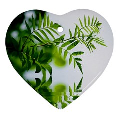 Leafs With Waterreflection Heart Ornament