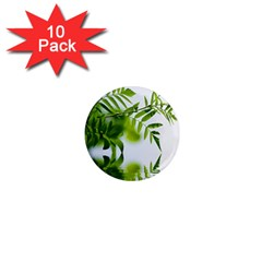 Leafs With Waterreflection 1  Mini Button Magnet (10 pack)