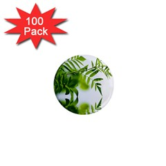Leafs With Waterreflection 1  Mini Button Magnet (100 pack)