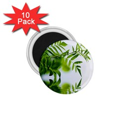 Leafs With Waterreflection 1.75  Button Magnet (10 pack)
