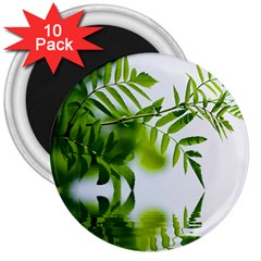Leafs With Waterreflection 3  Button Magnet (10 pack)