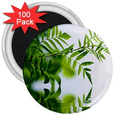 Leafs With Waterreflection 3  Button Magnet (100 pack)