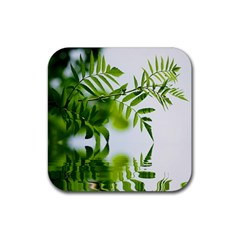 Leafs With Waterreflection Drink Coasters 4 Pack (Square)